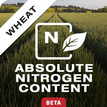 Absolute Nitrogen Content