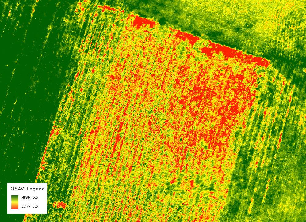 PrecisionMapper | Drone & UAV Mapping Analytics