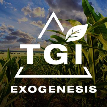 Triangular Greenness Index