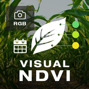 Visual NDVI