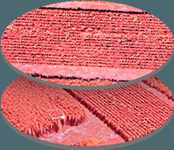Multispectral Sensor
